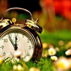 Make your company run like 'Clockwork'