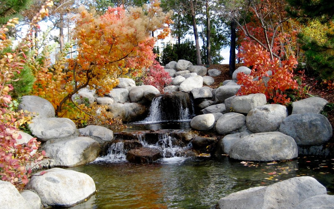 Effective Financial Planning for Landscaping Businesses